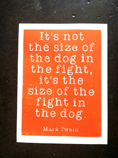 Mark twain best famous quotes images pics  (16)
