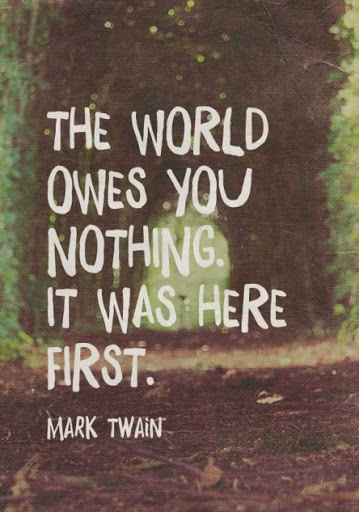Mark twain best famous quotes images pics  (21)